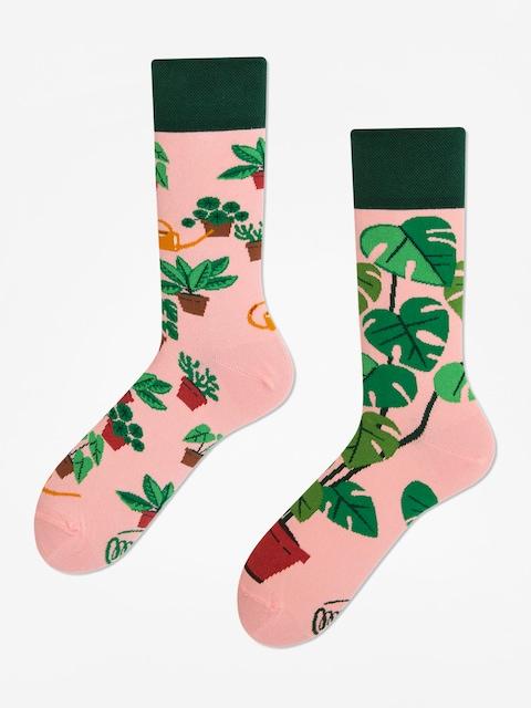 Ponožky Many Mornings Plant Lover (pink/green)