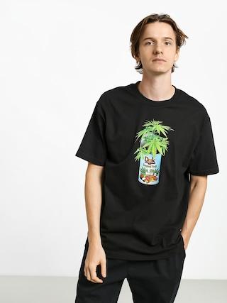 Triu010dko DGK Tropical Fruit (black)