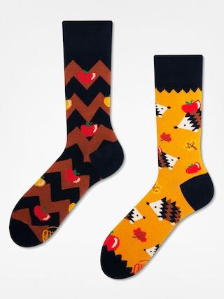 Ponožky Many Mornings Apple Hedgehog (yellow/brown)
