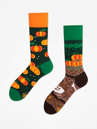 Ponožky Many Mornings The Pumpkins (green/orange)