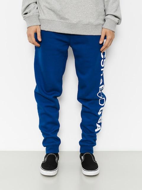 Kalhoty DC Clewiston (sodalite blue)